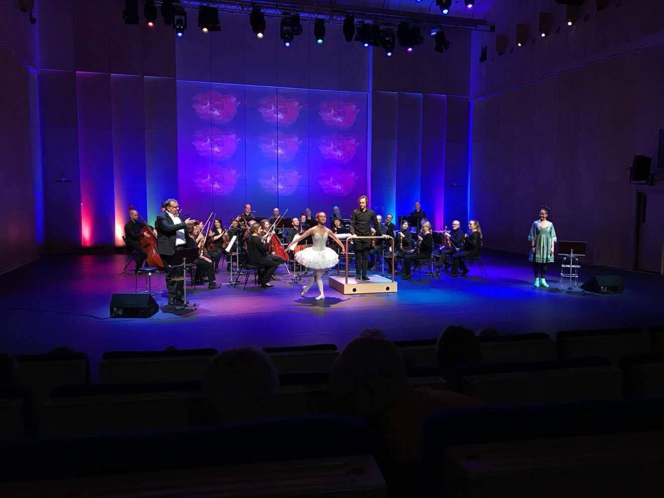 Joutsikki – Sibelius näyttämöllä